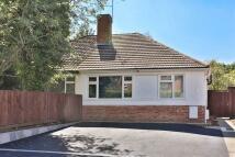 2 bed Semi-Detached Bungalow to rent in Horsefair Street...