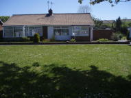 Semi-Detached Bungalow to rent in Kenilworth Way, Redcar...