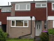 Terraced home to rent in Willowfield, Woodside