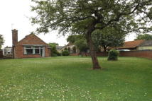 2 bed Detached Bungalow to rent in New Road Over Cambs CB24...