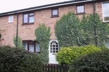 Wycliffe Road house to rent