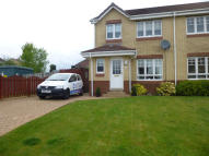 3 bedroom semi detached house to rent in Drummore Avenue...