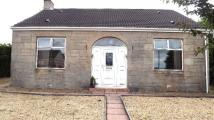 Bungalow for sale in Main Street, Chapelhall...