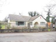 Detached Bungalow in Roberts Lane, Poole, BH17