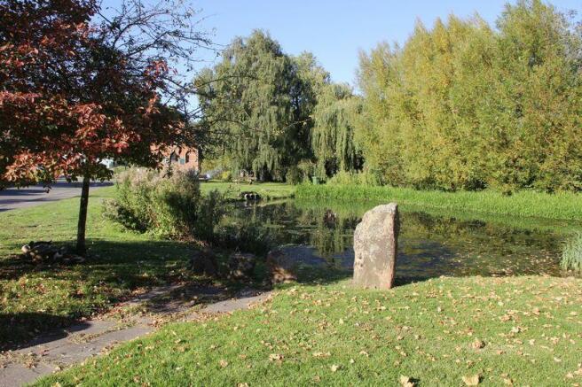 Village duck pond