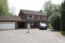 4 bedroom Detached house to rent in Court Road, Rollesby...
