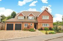 6 bedroom Detached property to rent in The Paddocks, Weybridge...