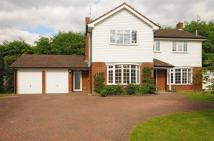 4 bedroom Detached property in The Garth, Miles Lane...