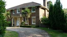 4 bedroom Detached house to rent in Farmleigh Grove ...