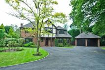 5 bed Detached property to rent in Fairoak Close, Oxshott...