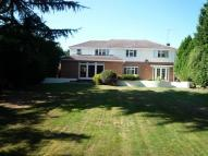 Detached property in Pine Walk, Cobham, Surrey