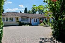 Earleswood Detached house to rent