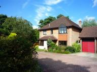 Detached home to rent in Sorbie Close...