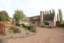 Detached property in Ashby Road, Moira...