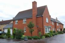 4 bed property to rent in Albemarle Link...