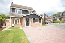 house to rent in St Cleres Way, Danbury...