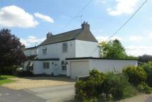 Detached property to rent in Hawthorn Road, Reepham...
