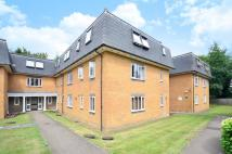 Studio flat to rent in Ireton Close...