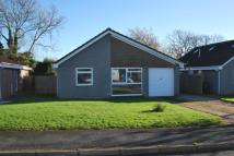Detached property to rent in Churscombe Park, Marldon...