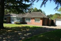 Detached Bungalow in Darras Road, Darras Hall