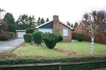3 bedroom Detached home to rent in 10 Linden Way, Ponteland...