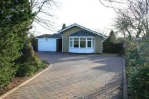 4 bed Detached Bungalow in Sandringham Way...