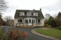 Detached home in Western Way, Darras Hall...