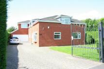 5 bedroom Detached property to rent in Parklands, Darras Hall...