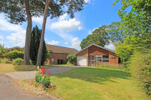 Detached Bungalow in West Wellow