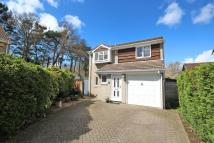 4 bed Detached house in Ashurst