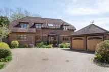 Detached property for sale in Horton Heath