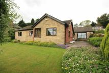 Detached Bungalow to rent in Quaker Lane, Richmond...