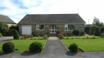 Detached Bungalow to rent in Dale Grove, Leyburn...
