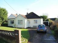 3 bed Detached Bungalow in Spring Lane...