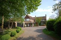 Detached property to rent in Bayfordbury, Hertford...
