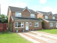 Detached house in Buller Close, Blantyre...