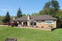 5 bed Detached home in Kazmira The White Walk...