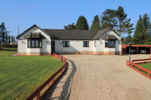 Detached Bungalow for sale in Muttonhole Road...