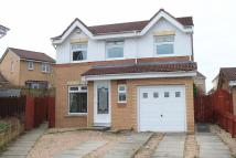 Detached house for sale in Robert Wynd, Wishaw...