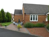 Semi-Detached Bungalow in Millbrook Road...