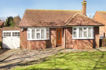 Detached Bungalow to rent in Old Green Road...