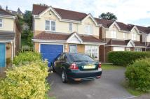 Detached home in Harriet Drive, Rochester...