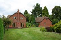 Detached property for sale in Burley Street, Burley...