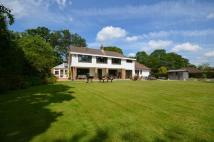 Detached home for sale in Pound Lane, Burley...