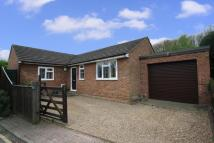 Detached Bungalow for sale in Rosemary Lane, Thorpe...