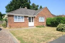 2 bed Bungalow in Harpesford Avenue...