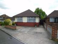 Detached Bungalow to rent in Basing Drive, Bexley...