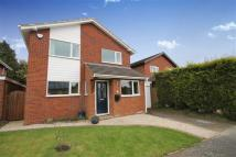 Wannions Close Detached property for sale
