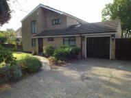 Detached house for sale in Park Lane, Hartford...