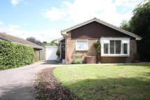 Detached Bungalow for sale in Tenacre, Goldsworth Park...